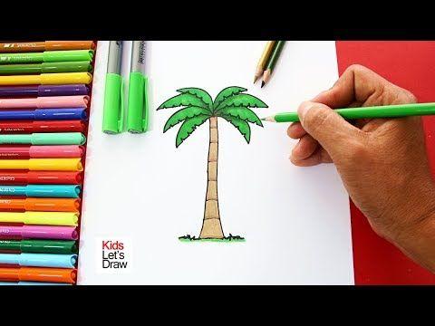 Palmera palma | Palmera dibujo, Palmeras, Dibujo paso a paso