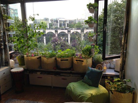 potager intérieur appartement - Recherche Google  Plantes d ...