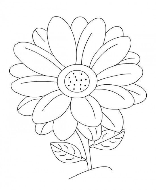 Daisy Flower Garden Coloring Page Flower Coloring Pages Garden