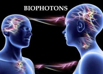 "Biophotons transmit information between cells within the body and also between organisms! Fritz-Albert Popp calls it ""photon sucking"", which is the exchanging of photons. Barbara Brennan talks about this in her book ""Hands of Light"" as the energy exchange between people via their chakras and aura (subtle bodies or energy field layers).:"