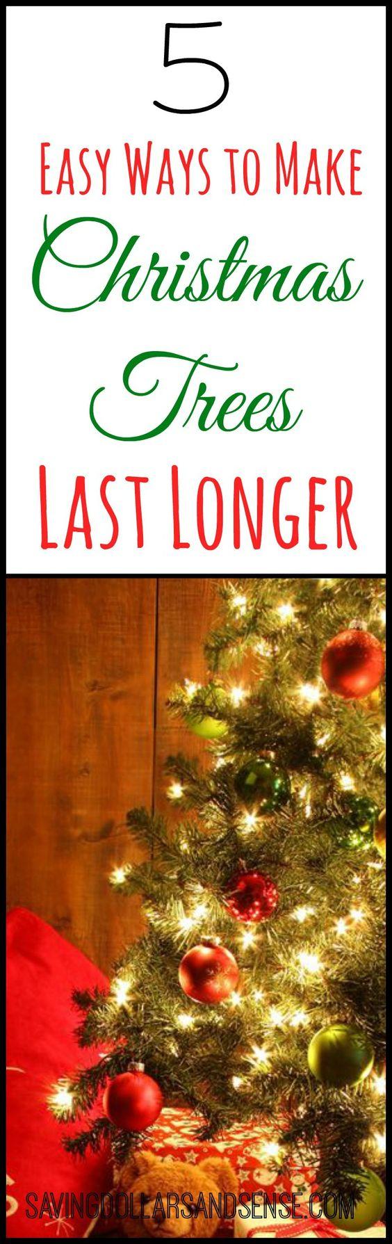 Christmas Tree Make Last Longer : Christmas trees and on