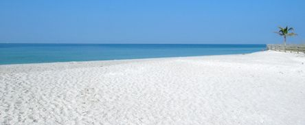 126 Best Florida Images On Pinterest 50 States And United