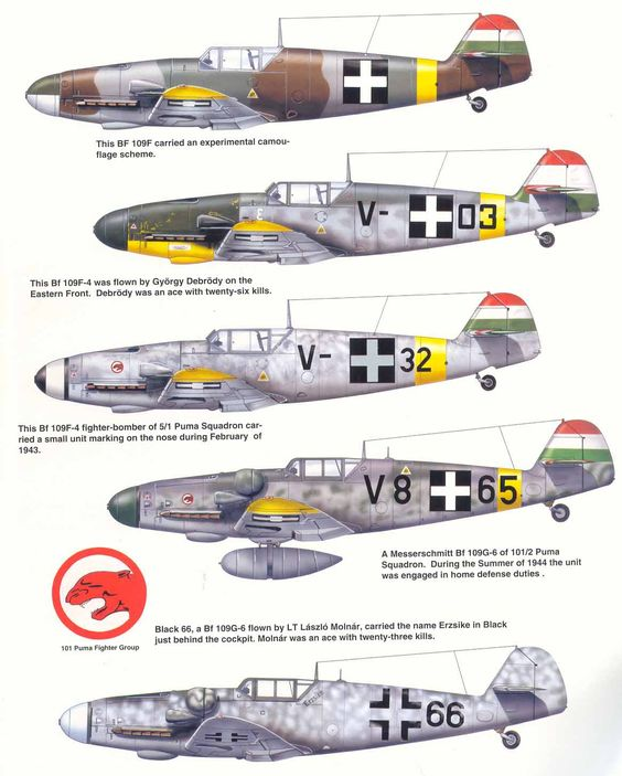 Hungarian Aircraft WW2