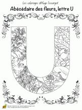 Lettre U Coloriage abécédaire floral sur Hugolescargot.com