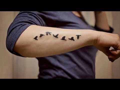 Small Tattoos For Men On Arm Designs Bird Tattoos Arm Tattoos Bird Tattoo Men