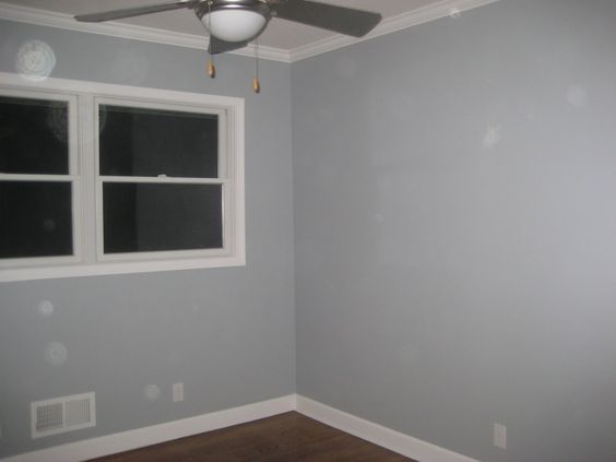Monorail Silver By Sherwin Williams For The Home
