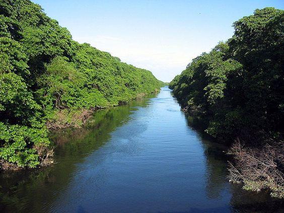 """Com uma extensa área verde, bosques, quadras esportivas, anfiteatro, lanchonetes e um imenso mangue, com flora e fauna típicas da região, o Parque do Cocó é uma excelente opção de lazer, principalmente para o período das férias. Os visitantes ainda podem aproveitar os eventos e shows que acontecem ao ar livre, além de se aventurarem...<br /><a class=""""more-link"""" href=""""https://catracalivre.com.br/fortaleza/agenda/gratis/parque-do-coco-e-um-role-com-a-natureza-nas-ferias/"""">Continue lendo »</a>"""