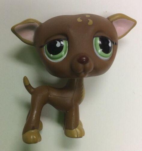 lps brown dog littlest - photo #9