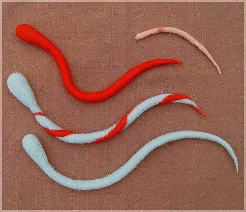 Schlangen und Regenwurm - wet (felted) snakes and an earthworm by Flocks, via Flickr