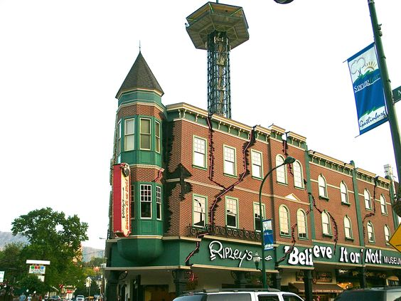 Explore Ripley's Believe It or Not museum for fascinating oddities from around the world!