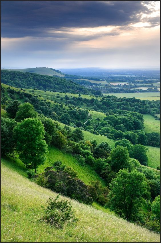 South Downs, Sussex, England by John Dominick