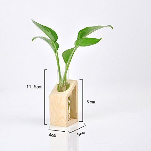 Glass Tube Vase Wooden Stand Flower Pots Hydroponic Plant Home Garden Decoration