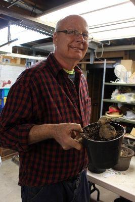 Mike pots a dahlia tuber