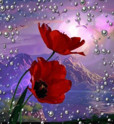 fiori18.gif - Fiori glitter grafica immagini piante bouqet,gif,mazzi,composizioni  animate-Flowers plants glitter graphics images animated gifs Grafica glitter per i  vostri spazi web COPIA IL CODICE PER AGIUNGERE QUESTA IMMAGINE NEL TUO SPAZIO:            Fiori