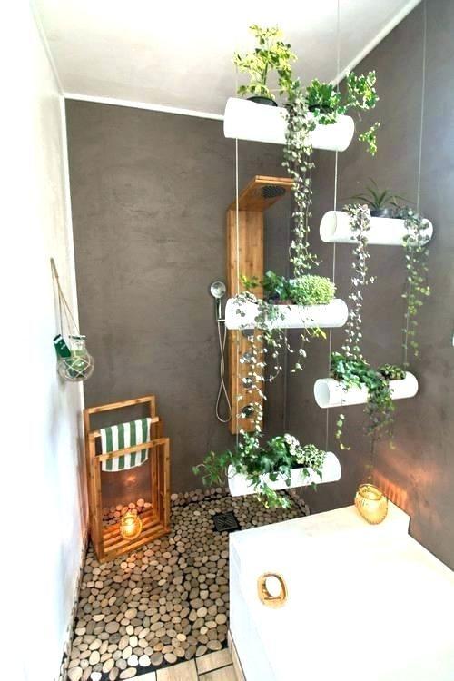 Plante Pour Salle De Bain Sans Fenetre