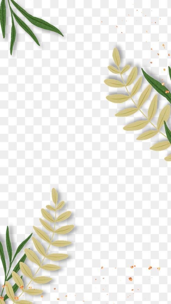 Tropical Leaf Png Glitter Frame Design Free Image By Rawpixel Com Bird Frame Design Glitter Frame Design