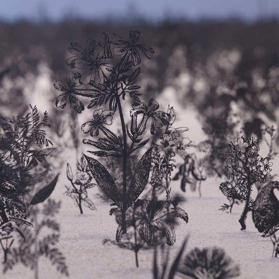 Blackfield: Illustration Meets Installation with 12,000 Steel Plant Specimens