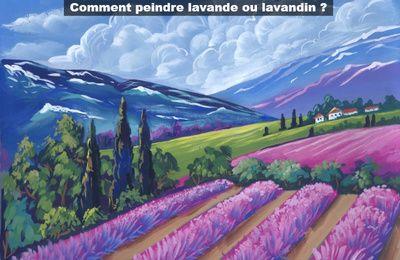 Dessin Et Peinture Video 2822 Le Champ De Lavandin Ou De