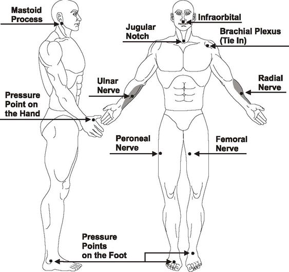 us marine corps karate and charts on pinterest : pressure point diagram - findchart.co
