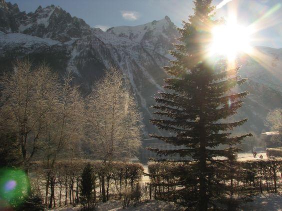 Frozen trees@Chamonix 2008