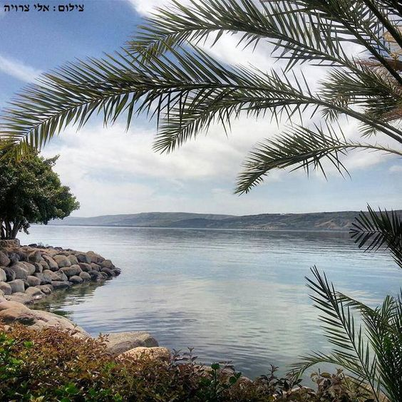 Sea of Galilee, Israel (Photo by Eli Tzruia)