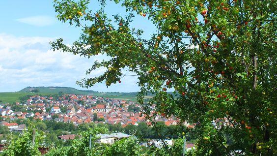 Blick vom Schemelsberg nach Erlenbach, einer Nachbargemeinde von Weinsberg, Germany