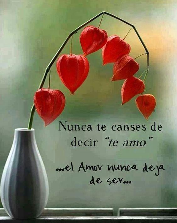 El Amor nunca deja de ser ...