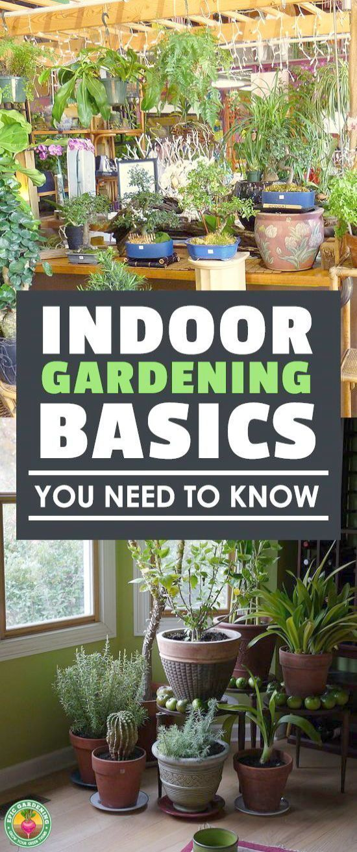 Gardening Pick Container Vegetable Gardening Tips For Beginners