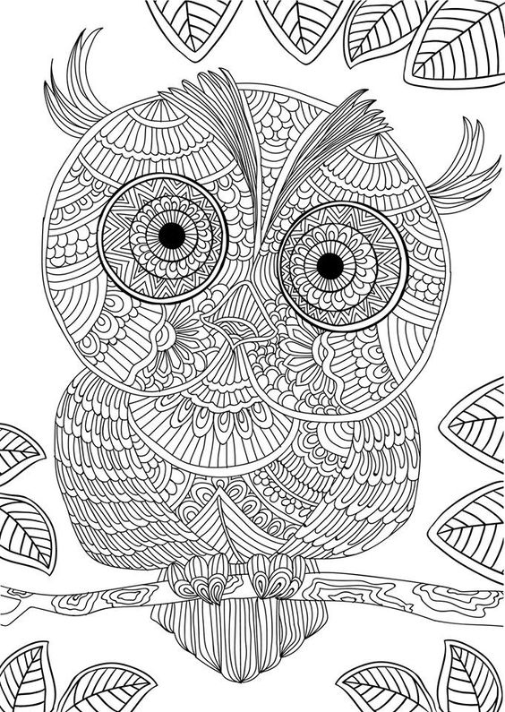 owl design coloring pages - adult coloring owl designs and coloring books on pinterest