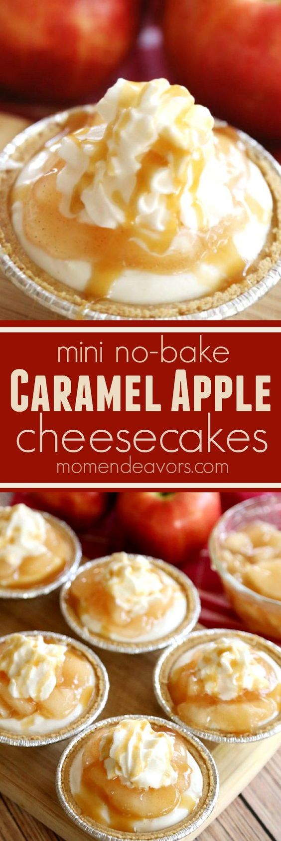 No-bake mini caramel apple cheesecakes! SO easy to make and SO good!