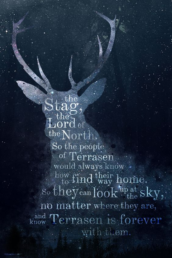 wyress: THRONE OF GLASS | The Stag Constellation: