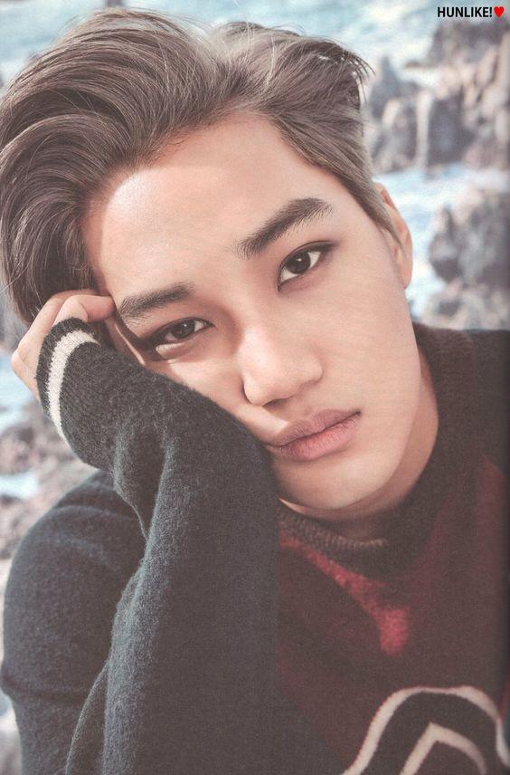 EXO (Kai) 2017 Season Greetings   KimKai   Pinterest ...
