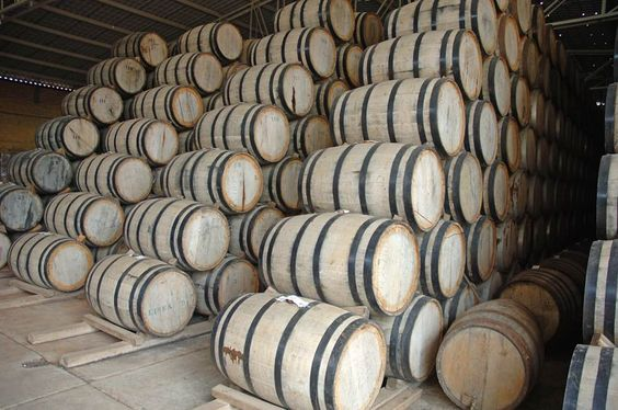 tequila distillation - Google Search