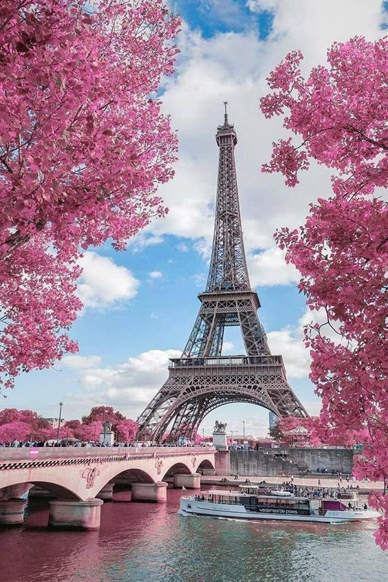 The Eiffel Tower in springtime in Paris! Story by @sonsyez on Steller. #StellerStories #TravelDestination #ParisTravel #ParisVacation #FranceVacation #ParisInSpring #ParisSeasons #BeautifulPlaces #ParisFrance #EiffelTowerPhotography #ParisPhotography