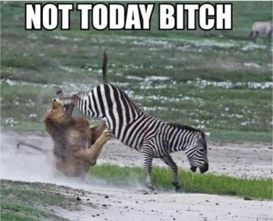 Not today...not today lol