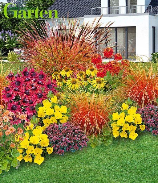 Mein Schoner Garten Staudenbeet Som Staudenbeete Bei Baldur Garten Stauden Steingarten Pflanzen Garten