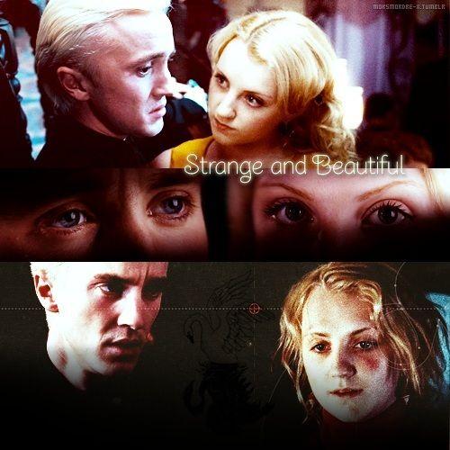 Draco and Luna Photo: Draco/Luna Druna!