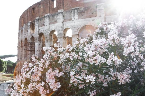 Was kostet ein Städtetrip nach Rom – detaillierte Kostenaufstellung