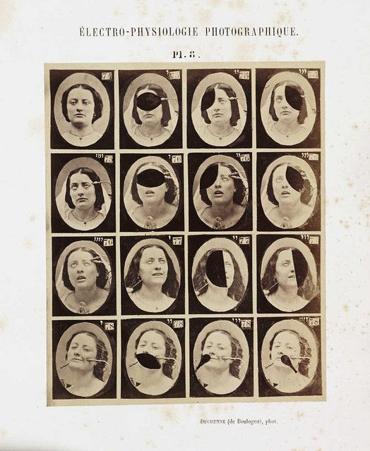 The Mechanism of Human Physiognomy | The Public Domain Review