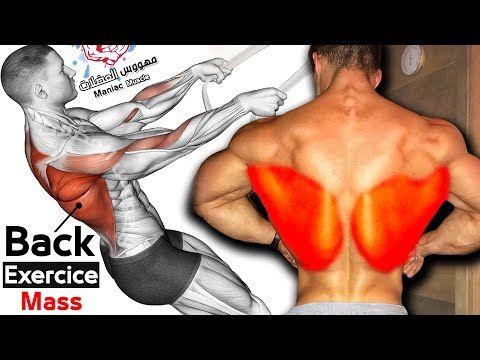 Como Desarrollar Su Entrenamiento De Espalda 6 Ejercicios Efectivos Youtube In 2021 Back Workout Exercise Workout
