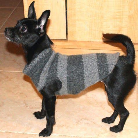 DIY: Abrigo para mascotas. Ideas, patrón y tutorial