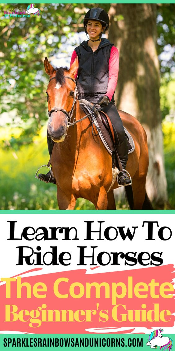 Learn all the basics of riding horses step by step with this beginner's   guide and make sure you're working with a qualified instructor when you   start riding to keep you safe and on the right track.  In this guide...   its long and plentiful with tips and information. I cover what you need   to know to begin your foundation in riding. Great for newbies and   beginners brushing up on riding knowledge.