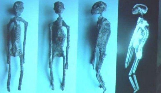 """""""Les Extraterrestres de Nasca-Alien Project-Ces créatures ne sont pas humaines selon les scientifiques"""""""