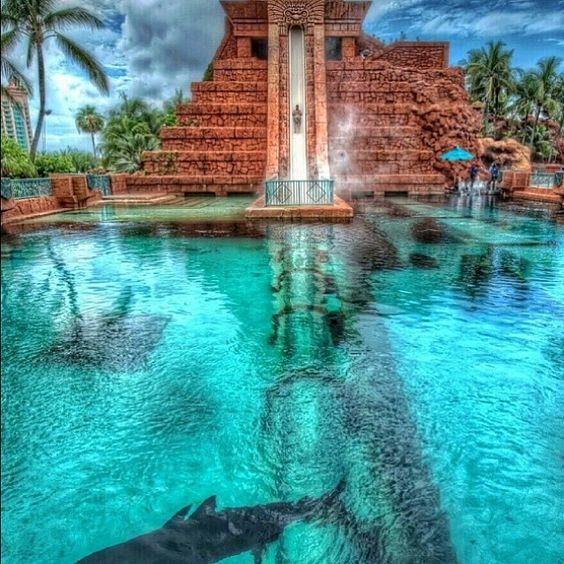 Paradise on Earth @paradiseonearthh Instagram photos | Websta shark-infested water slide at the Atlantis Resort in Nassau, Bahamas? Credit:@luxuryworldtraveler.