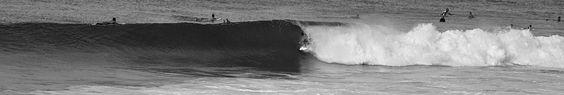 Wave Surfing Hawaii