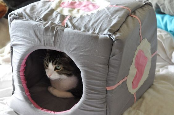 Make your cat a companion it can sleep in, a Catpanion Cube! This project can be done over a weekend, so get sewing! (Warning: several cute cat photos follow)