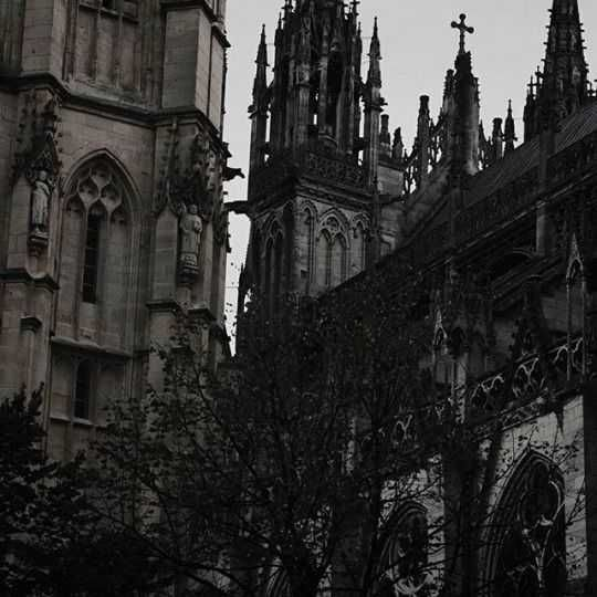 Maximalist Romantic Witch Inspiration Album Gothic Aesthetic Slytherin Aesthetic Gothic Architecture Sounds perfect wahhhh, i don't wanna. gothic aesthetic slytherin aesthetic