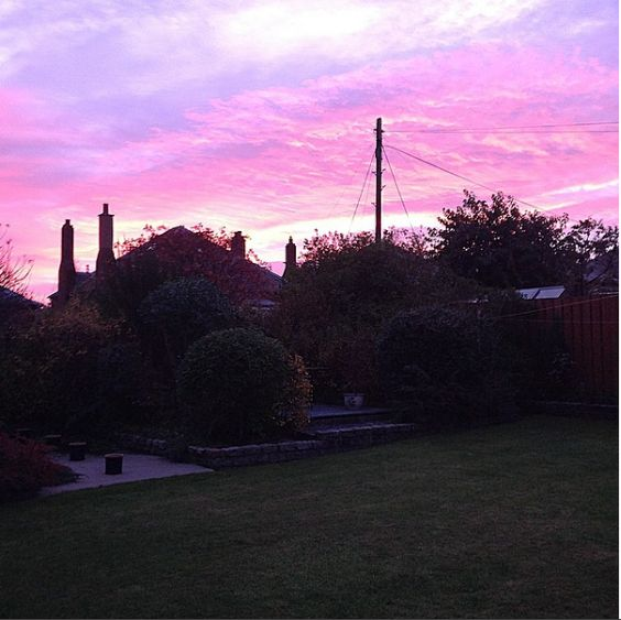 One of the only times I was up early enough to catch sun rise in the autumn - a view of my back garden.