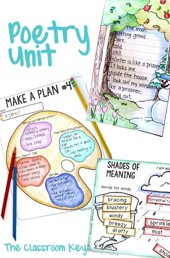 Poetry Writing Unit for 2nd or 3rd Grade | Activities ...