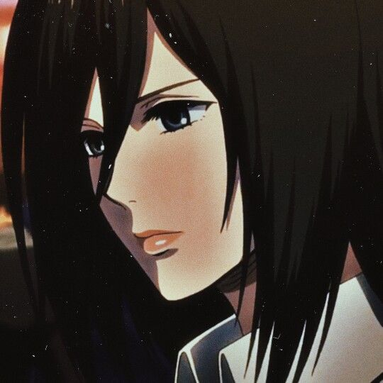 Mikasa Ackerman Attack On Titan Fanart Animated Drawings Taehyung Fanart